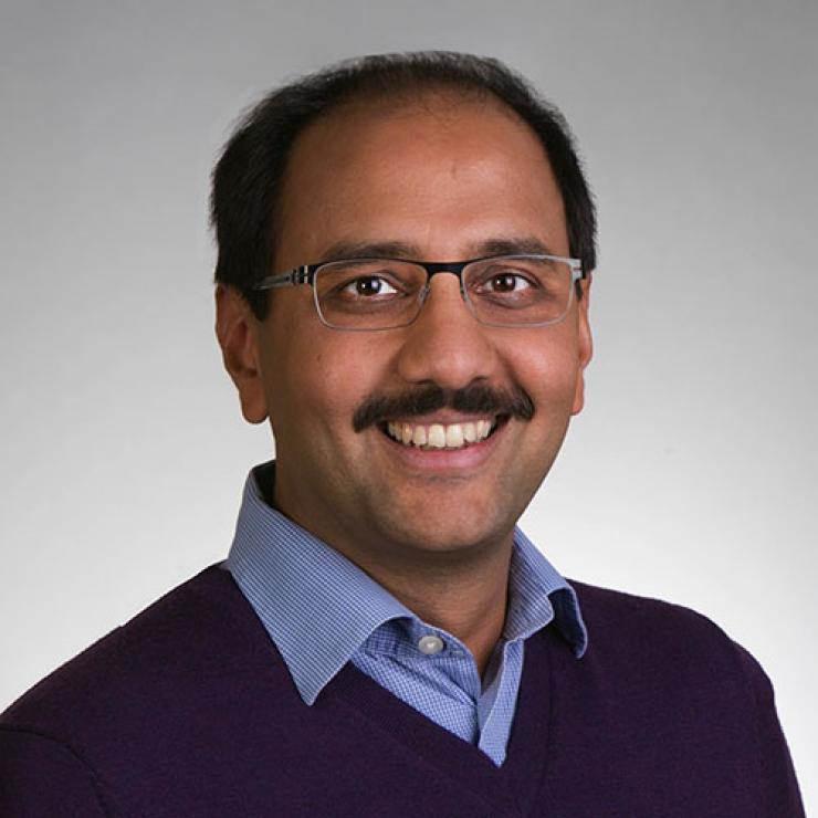Professor Alark Joshi